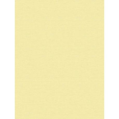 Papier peint intissé uni jaune pastel - BJORN - AS CREATION