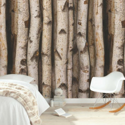 Panoramique XL bouleaux - Material - Caselio