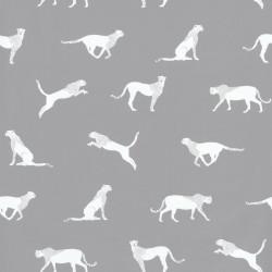 Papier peint guépard gris - Smile - Caselio