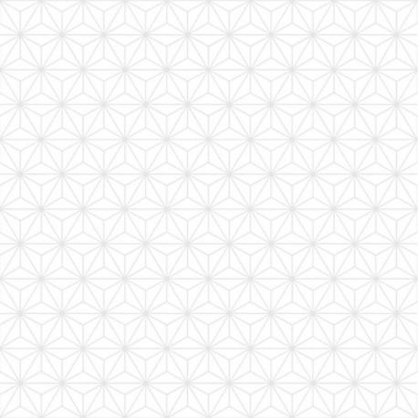 Papier peint Origami blanc ton sur ton - GRAPHIQUE Ugepa