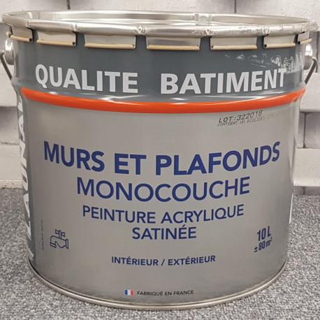 """Peinture intérieure spéciale mur """"QUALITE BATIMENT"""" blanc satin - THEODORE  - 10L"""